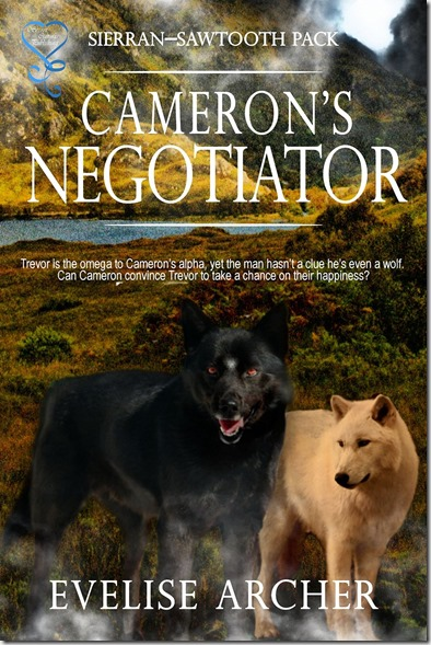 camerons negotiator