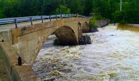 10. 6-29-15 bridge to Pine Island Livermore