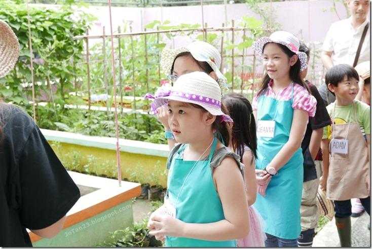 Jensen Kinder Farm Organic Farming for Kids and Adults Quezon City - jotan23 (7)