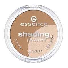 essence_shading_powder_02_regional