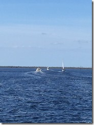 Belhaven2 2015-10-24 004