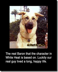 The Real Baron -- Paul D Marks