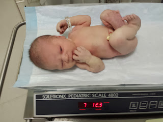 7 lbs 12 oz seems to run in the family. A number of his relatives came in at that same weight.