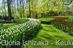 1 .Glória Ishizaka - Keukenhof 2015 - 39