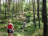 Eén van de vele heuveltjes tijdens deze Vierdaagse.