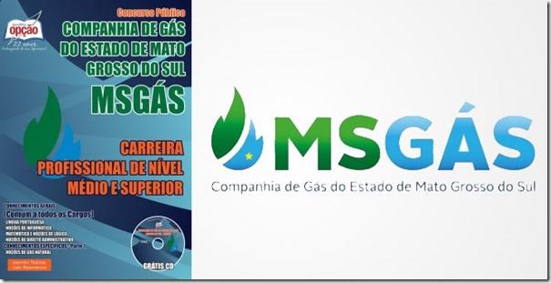 apostila-concurso-msgas-comum-todos-cargos-medio-superior