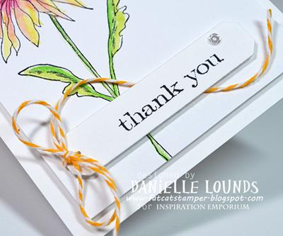 ThankYouBlossom_C_DanielleLounds