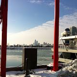 Navy Pier Park in Chicago 01152012j