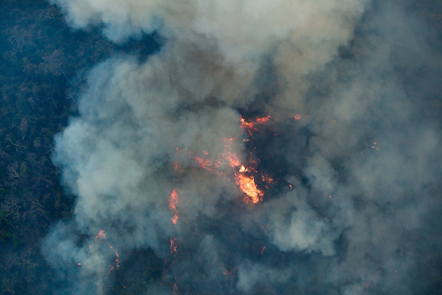 Aerial view showing forest fires in the Indigenous Land (TI) Arariboia, located in Maranhão State, home to 12,000 Guajajaras and about 80 isolated individuals of the Awá-Guajá people, 24 October 2015. The fire already lasts two months and is the largest ever recorded in Brazilian indigenous lands. About 45 percent of 413,000 hectares of land have been destroyed. Photo: Marizilda Cruppe / Greenpeace