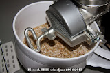 bioweek6BIO2015WM-4984.jpg