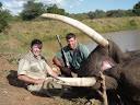 Dr Jim Sink Elephant
