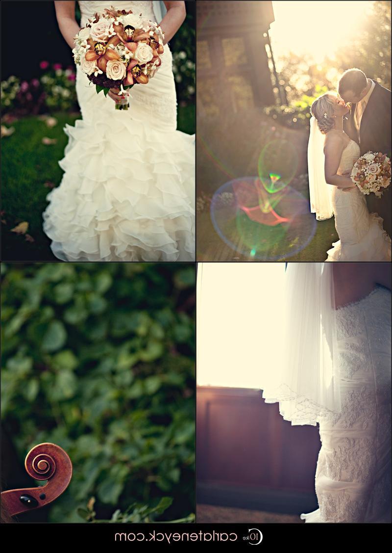 most beautiful wedding