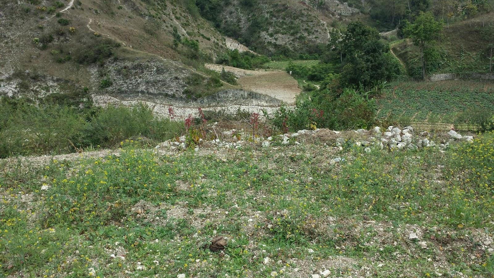 Terrain a vendre a fermathe 63 le courtier immobilier d for Acheter une maison en haiti