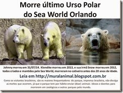 Morre johnny Urso Polar_thumb[1]