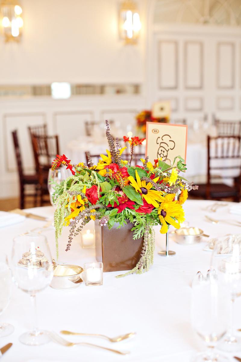 Eco-Friendly Vineyard Wedding