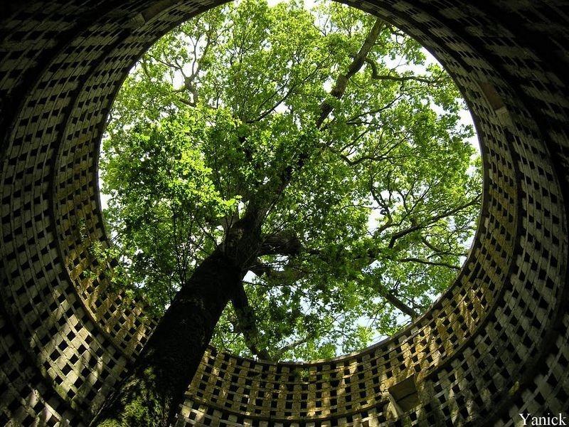 oak-dovecote-pouzay-2