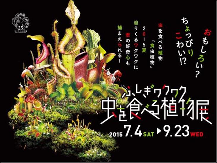 Osaka poster