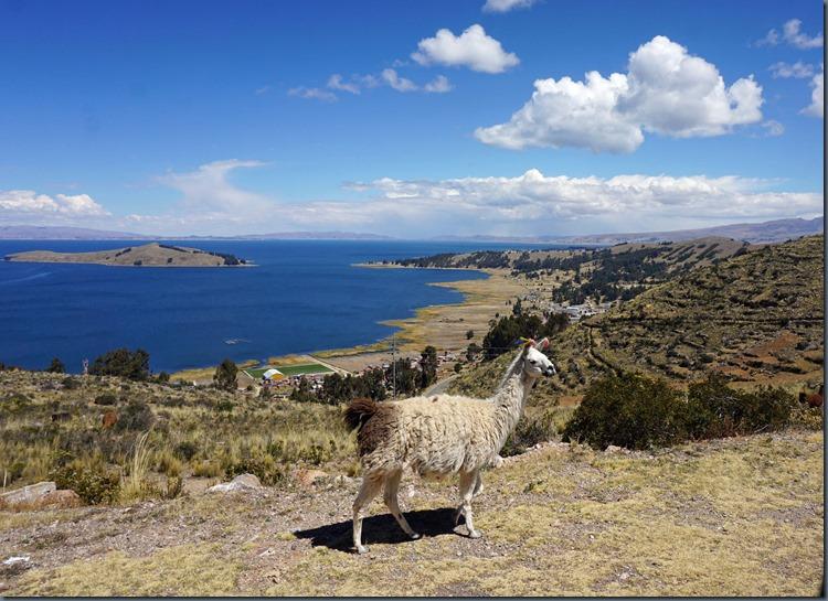 über dem Titicacasee