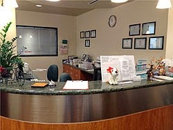 Dental Specialist of Westchase