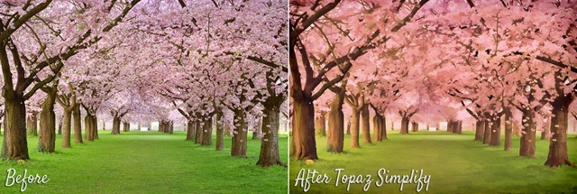 Topaz Labs Simplify Before & After