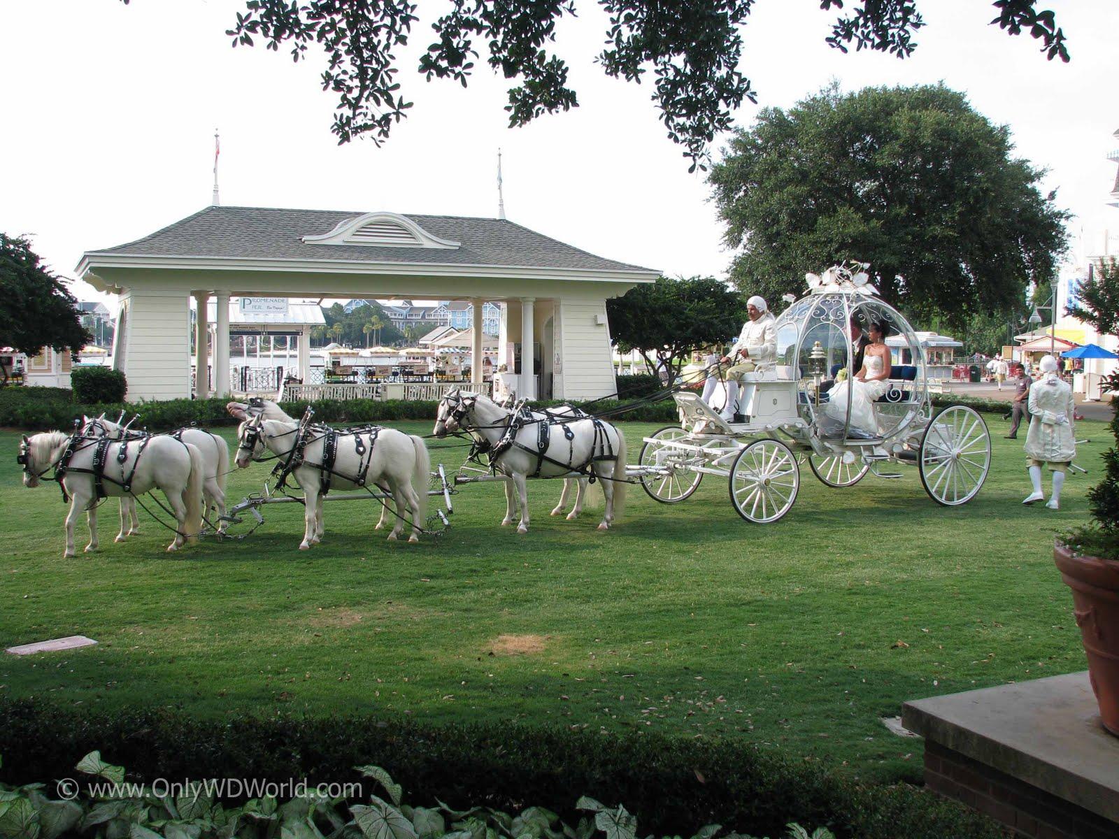 disney world wedding blog