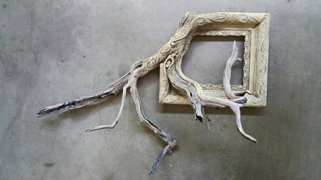 janelle: Tree branches fused with picture frames are pretty darn ...