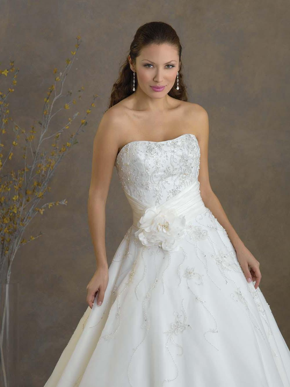 Train 2011 Wedding Dress