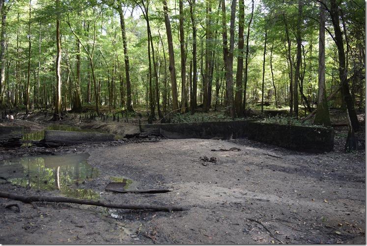 Dam remains-2