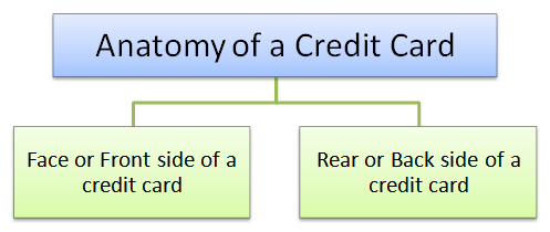 anatomy of credit card