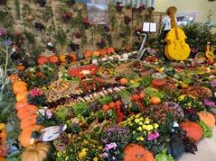 2015.09.13-030 légumes et fruits