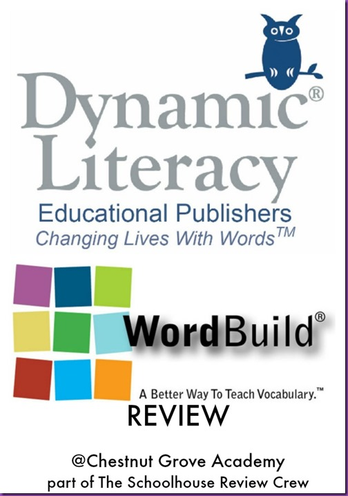 Dynamic Literacy WordBuildOnline Review