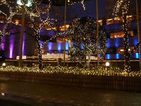 ヒルトン東京のクリスマスイルミネーション2012