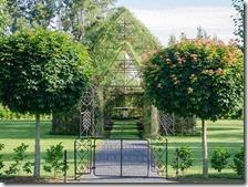 La chiesa albero in Nuova Zelanda