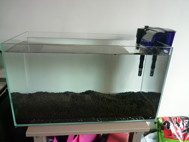 Image of an empty tank with no plants, no fish