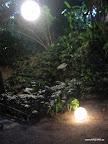 Iluminacion y Decoracion BODAS de Lujo (91).jpg
