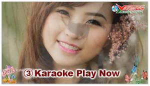Karaoke - Lý Cây Bông 1 (Beat)
