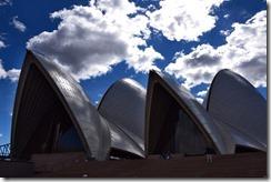 Sydney (12) (Medium)