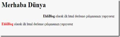 html-kodlari-ve-anlamlari-5