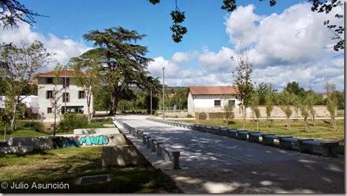 Parque Arantzadi - Al fondo cedro singular