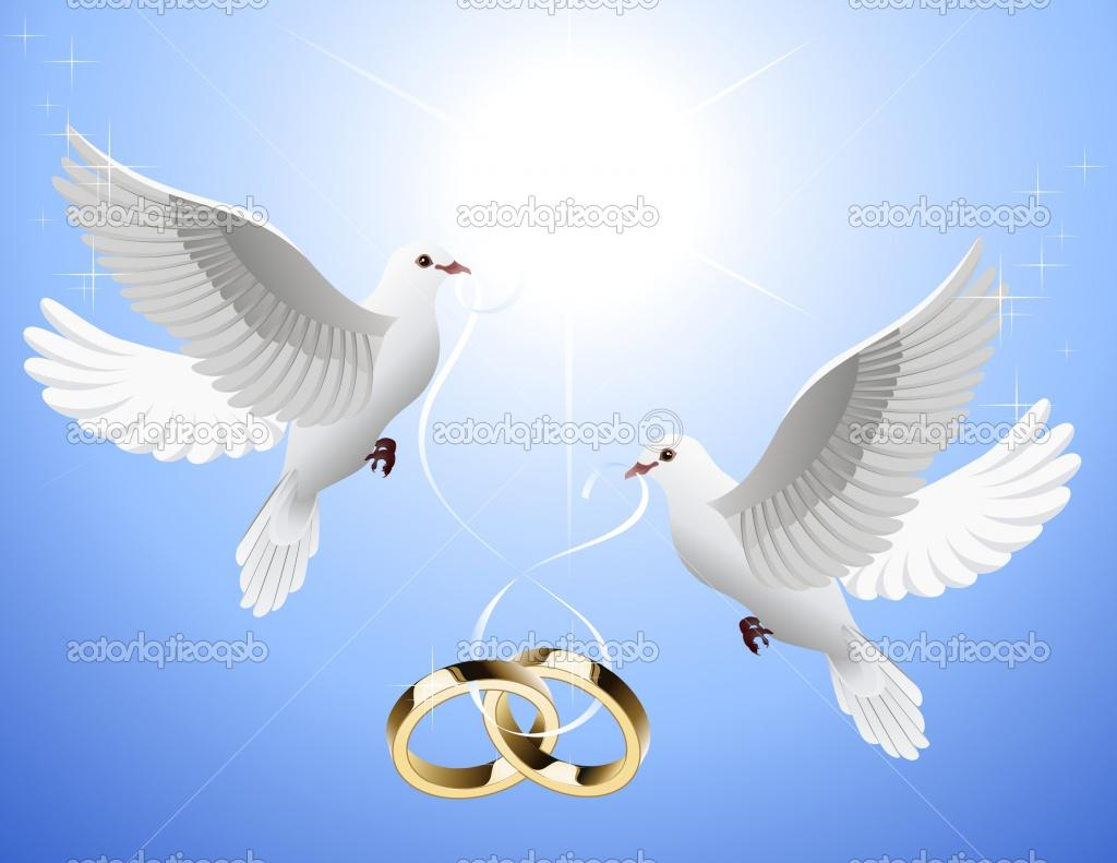 wedding rings, vector