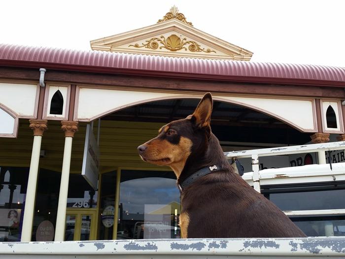 virtù - iconic Australia