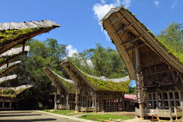 Lane of traditional Torajan houses at Kete Kesu, Tana Toraja, Indonesia