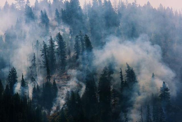 Aerial view of the Blue Creek wildfire, burning near Walla Walla, Washington, in July 2015. Photo: Ruth Fremson / The New York Times