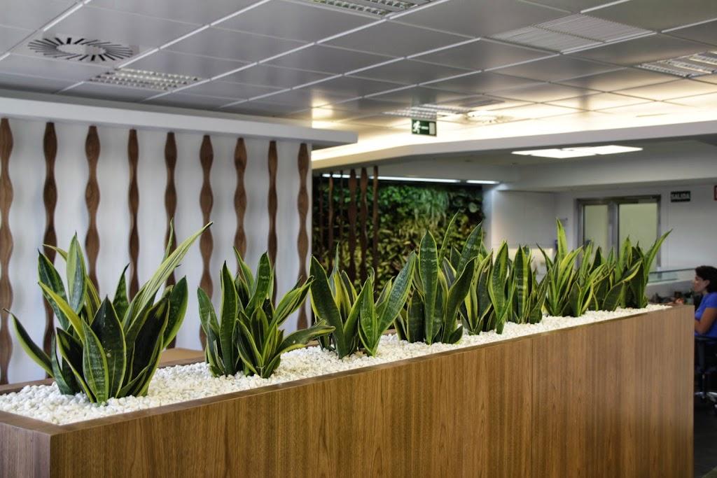 Paisajismo y jardines verticales en madrid alicante forestal for Jardines verticales espana