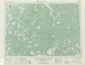 Thumbnail U. S. Army map np37-10