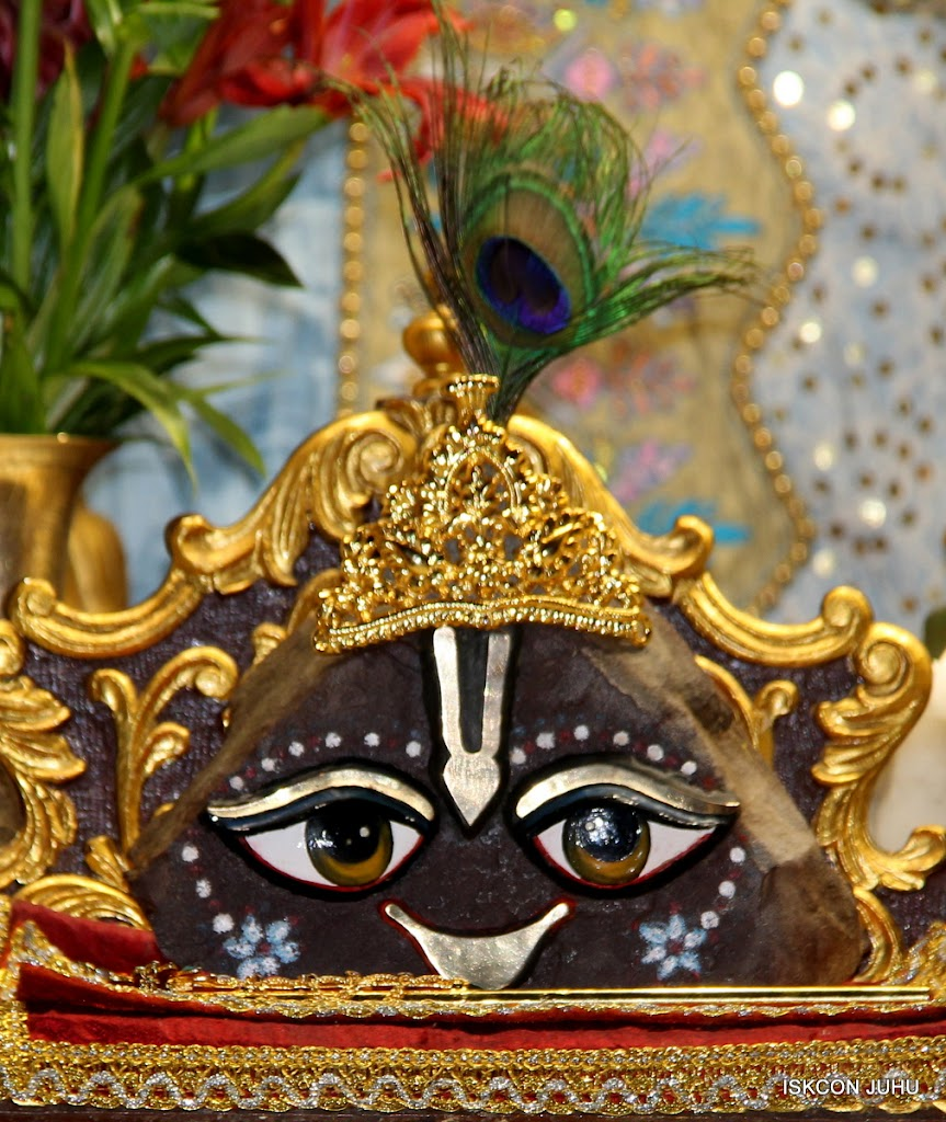 ISKCON Juhu Mangal deity Darshan 09 Feb 16 (18)