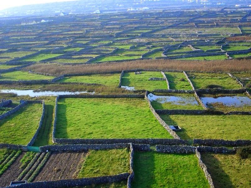 stone-walls-ireland-10