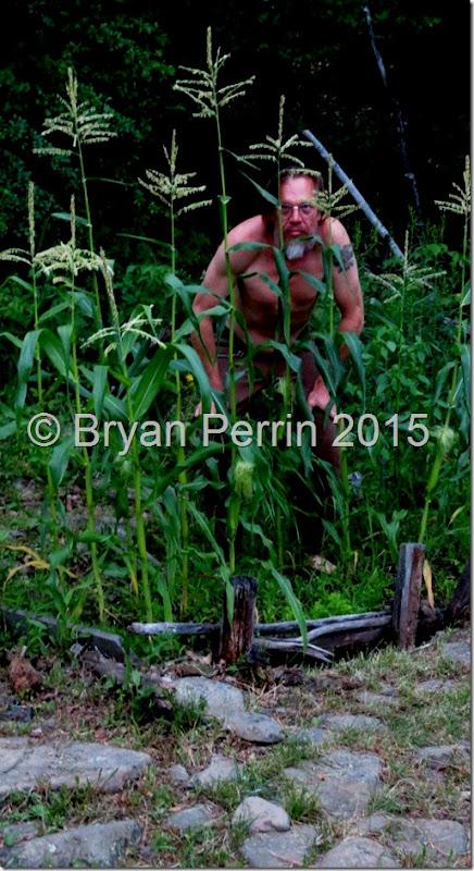 crouching corn King?
