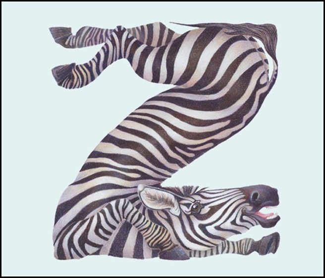 Casey Girard - Zebra