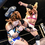 ladybeard australian wrestler in Shibuya, Tokyo, Japan